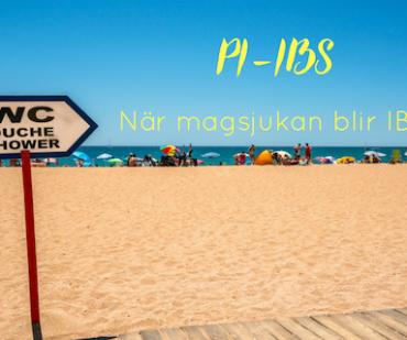 PI-IBS