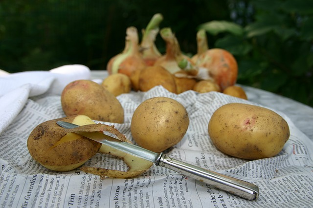 var kommer potatisen ifrån